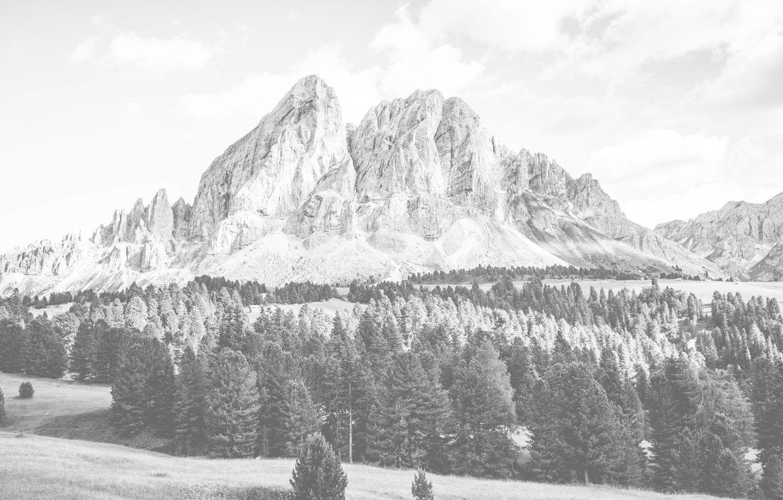 fx pasirinkimo kredito suisse yra patikimos forex įmonės